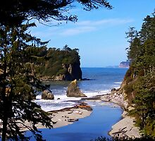 spectacular ruby beach, wa, usa by dedmanshootn