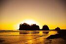 sunset gold, james island, washington, usa by dedmanshootn