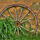 Archaic Wheel by sundawg7
