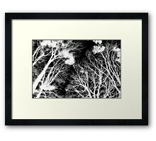 Ghostly Giants Framed Print