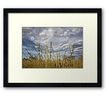 """""""It's the greenest its been in 100 years"""" Framed Print"""