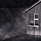 Tin Roof, Rusty by Suellen Cook