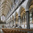 Salisbury Cathedral Nave by John Dalkin
