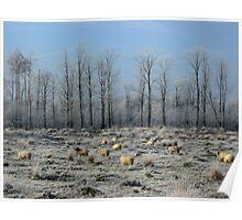 Sheep in Frozen Heatherfield Poster