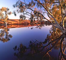 Ghost gums and waterhole, far western Queensland by Robert Ashdown