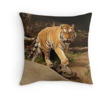 Restless Tiger Throw Pillow