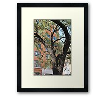 The Last Moments Framed Print