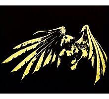 Pegasus White on Black Photographic Print
