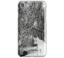 celsius alt iPhone Case/Skin