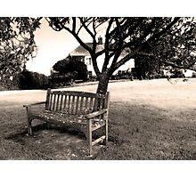 Bench, Week St Mary Village Green, Cornwall, UK Photographic Print