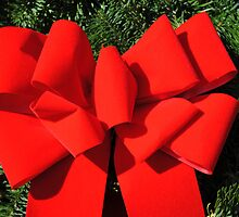 Big Red Bow No. 2 by MarjorieB