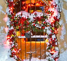 Christmas Gate by Lou Novick