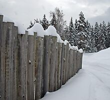 The Fence .. by julie08