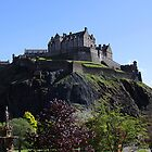 Edinburgh Castle and Princes Street Gardens by Linda More