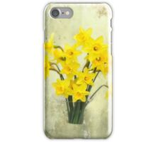 Daffodils in springtime iPhone Case/Skin