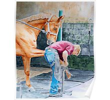 Horse and Farrier Poster