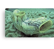 A squirt of a Goby! Canvas Print