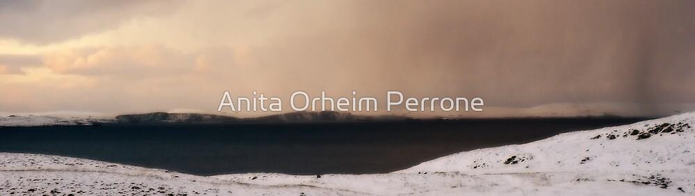 Winter Scene by Anita Orheim