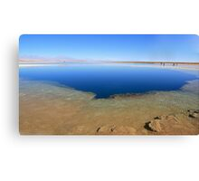 Cejas Lake - Atacama Desert, Chile Canvas Print