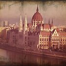 Parliament In Budapest by Rozalia Toth