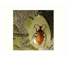 bug pendant on pashmina Art Print