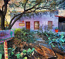 La Casa Lila by Barbara Manis