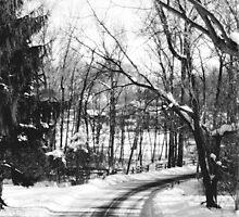 Icy Lane by JLPPhotos