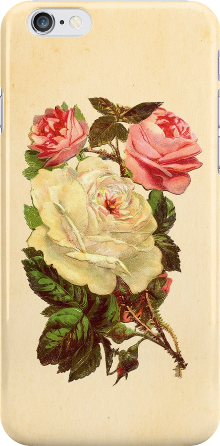 Roses by Claire Elford