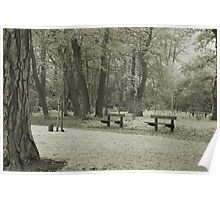 Empty benches in the park Poster
