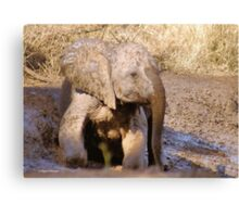 BABY ELEPHANT MUDBATH - SERIES: # UP CLOSE AND PERSONAL WITH ELPHANTS Canvas Print