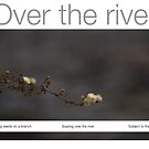 Over the river by Richard G Witham