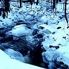 Winter Rapid by Ritva Ikonen