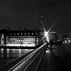 Parliament Bridge at Night by pinky763