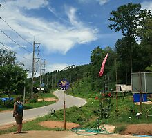 The windy road to Pai by Vicki Rothwell