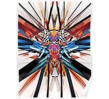 Mirror Image Abstract Poster