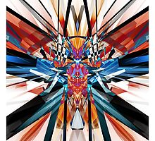 Mirror Image Abstract by Phil Perkins