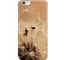 Dandelion IV iPhone Case/Skin