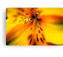 Deep Within Canvas Print
