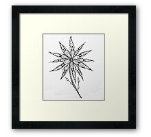 Flower Fantacy Framed Print