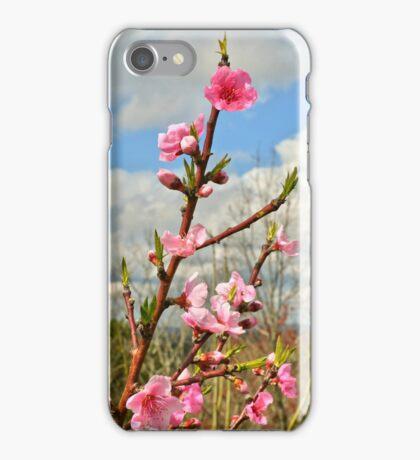 Desert Lady iPhone Case/Skin