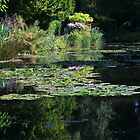 Monet's Garden - Lily Pond by Jocelyn Pride