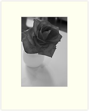 Lonesome Rose by Jordan Bails