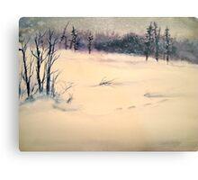 Landscape....Midwinter Light Metal Print