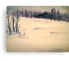 Landscape....Midwinter Light Canvas Print