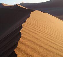 Sand Dunes!!! The oldest Desert in the world, Namib Desert by jasonpomerantz