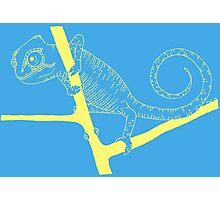 chameleon 3 Photographic Print