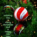 Wishing You A Merry Christmas And a Happy New Year by Wanda Raines