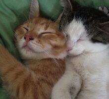 Cuddling kitties by marypilkinton