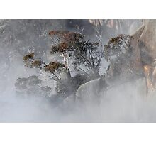 Misty Morning, Mt Buffalo Photographic Print