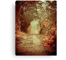 Path of Memories Canvas Print